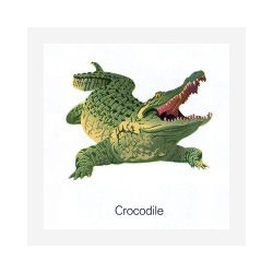 Fridge magnet Crocodile