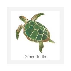 Fridge magnet Green Turtle